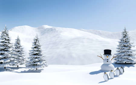 north pole: Arctic landscape, snow field with snowman and penguin birds in Christmas holiday, North pole