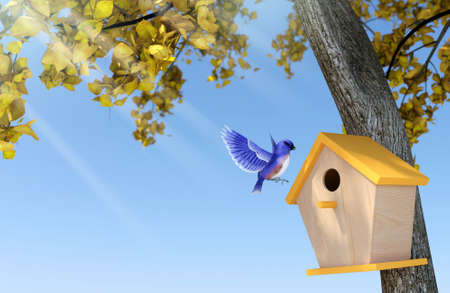 Sunshine day in autumn with clear blue sky, blue bird nesting in wooden birdhouse under yellow-leaf tree. 3D Rendering