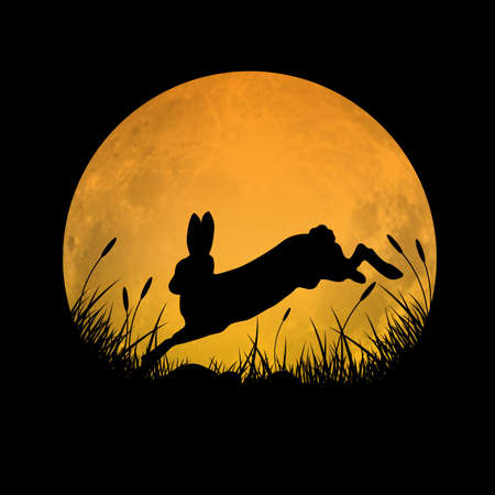 Silhouette of rabbit jumping over grass field with full moon background, vector illustration Ilustração