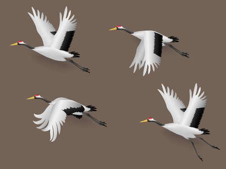 Set of Illustration Japanese Crane Birds Flying, Vector Illustration