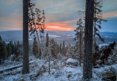 sweden winter: winter, forest, mountain, landscape with fallen tree during sunset Stock Photo