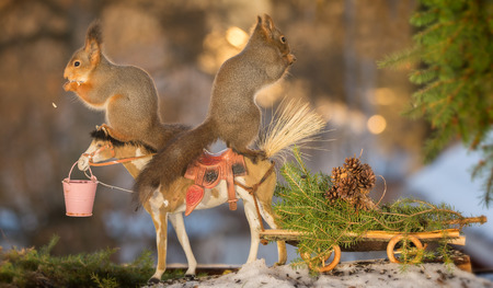 red squirrels on a horse with wagon loaded with a christmas tree