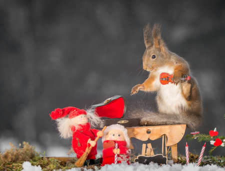 red squirrel standing with a violin , christmas doll and candles