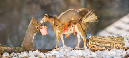 red squirrels on a horse with wagon loaded with wood in snow Stock Photo