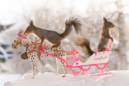 Red squirrels and an horse with a royal sleigh