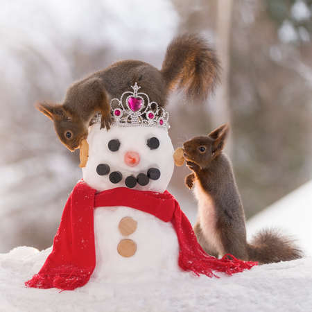 red squirrels are standing on an snowman