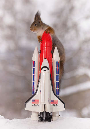 Red squirrel on an rocket with Space Shuttle