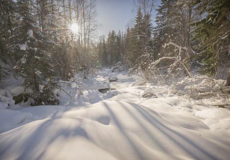 swedish winter landscape with sun beams Standard-Bild
