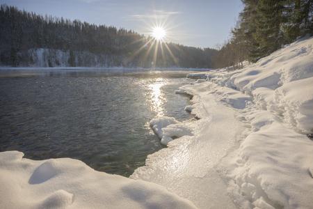 sun beams in swedish winter landscape with trees  Standard-Bild