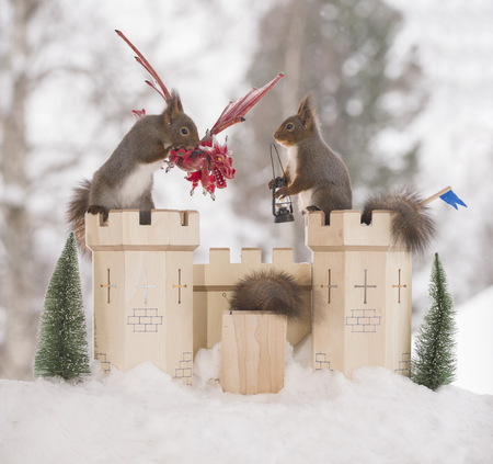 red squirrels with an castle and dragon  in a winter