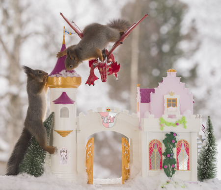 red squirrels with an palace and dragon  in a winter