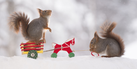 red squirrels with a wagon and a horse in the snow Standard-Bild