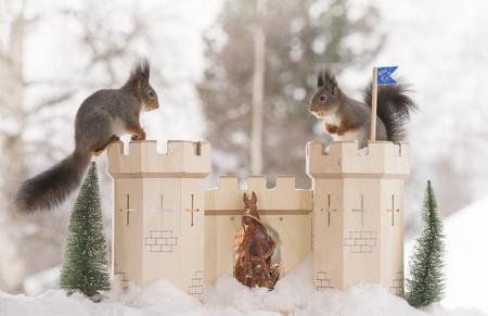red squirrels on an castle in a winter Standard-Bild