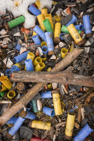 scattergun shots are on the forest ground  Stock Photo
