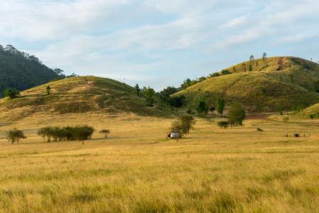 Bald mountain ,Grass Mountain, Grass Mountain is called Khao Hua Lon or Phu Khao Ya by the locals of Ranong Thailand,landscape Stock Photo