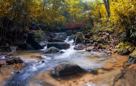 Waterfall and red bridge in Forest Stock Photo