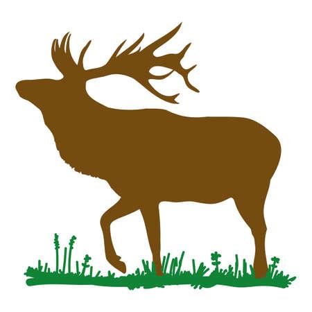 Deer standing Illustration