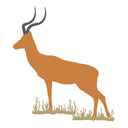impala Illusztráció