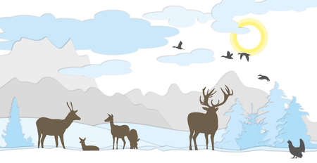 Deer on meadow winter