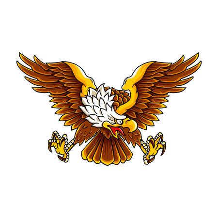 Bald Eagle Vektorové ilustrace