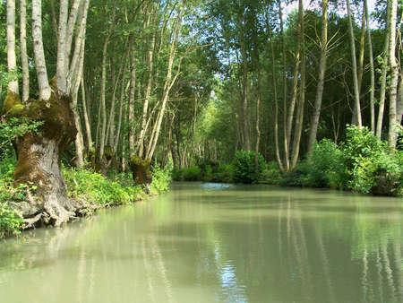 Marais Poitevin 6