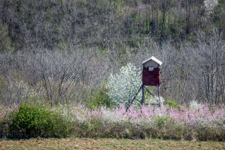 Hunting tower in the forest. Observation tower for hunting. photo