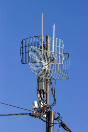 Outdoor wireless parabolic directional antennas on pole, grid antennas Standard-Bild