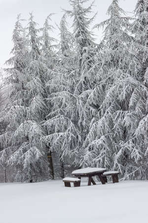 Wooden picnic table at winter. Snow covered picnic bench set with table.