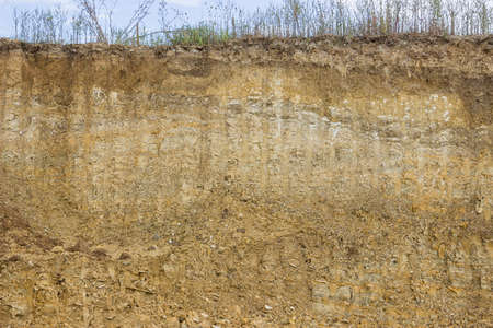 earthwork: Cross section of dirt, dirt background after working excavator Stock Photo