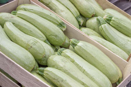 reasonable: Farmers market marrows in a wooden crates. At the farmers market local growers come and sell their freshly picked crops at reasonable prices. Selective focus.