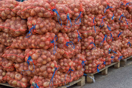 growers: Farmers market onion sacks. At the farmers market local growers come and sell their freshly picked crops at reasonable prices. Focus on front of image. Stock Photo