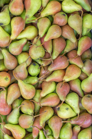 growers: Farmers market pears background. At the farmers market local growers come and sell their freshly picked crops at reasonable prices.