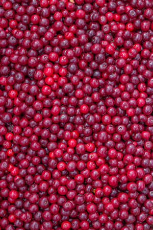 Farmers market sour cherry background. At the farmers market local growers come and sell their freshly picked crops at reasonable prices. Selective focus.