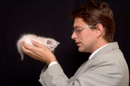 conceal: kitten Stock Photo