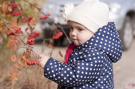 little girl breaks rowan