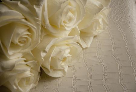 bouquet of white roses Zdjęcie Seryjne