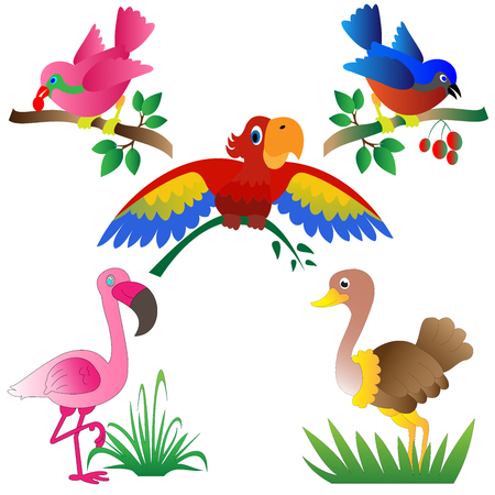 Collection of colorful cartoon birds vector illustrations good for kids room decorations and kids coloring books