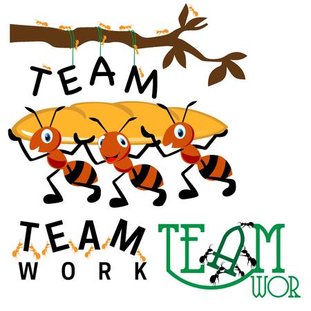 Kolekcja zdjęć pracy zespołowej mrówek trzymających ciężkie i grupy pracujących razem mrówek