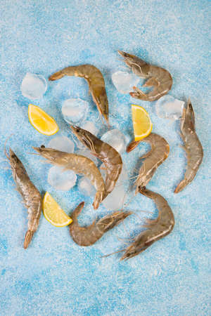 Raw king shrimp in a shell with ice on a concrete background, copy space