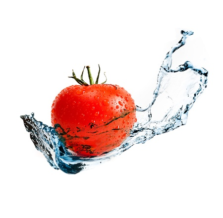 red ripe tomato with water splash isolated on white background photo