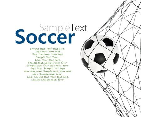 field  soccer: bal�n de f�tbol en la puerta de red en un fondo blanco con texto de ejemplo Foto de archivo
