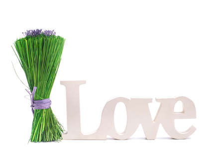 Bunch of green grass with purple Lavender isolated white background photo