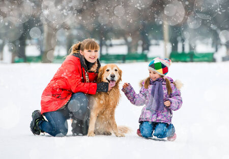 Happy family on a winter walk with the dog breed golden retriever photo