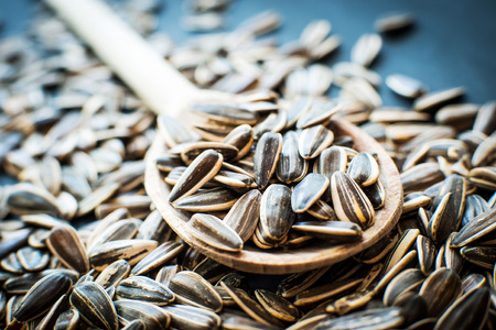 sunflower seeds: sunflower seeds in a wooden spoon