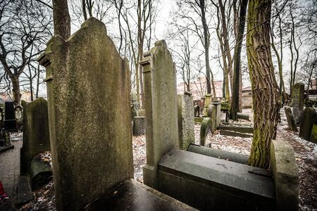 judaical: Warsaw, Poland - January 1, 2015: Historic old Jewish Cemetery in winter