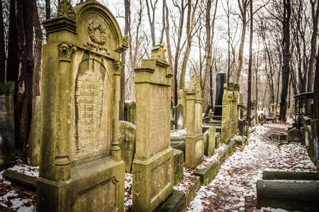 world war two: Warsaw, Poland - January 1, 2015: Historic old Jewish Cemetery in winter