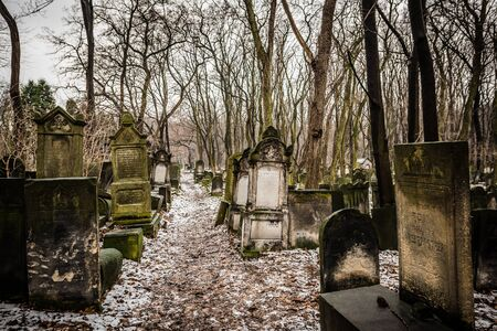 january 1: Warsaw, Poland - January 1, 2015: Historic old Jewish Cemetery in winter