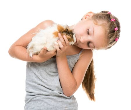 cavie: Cute bambina in possesso di un porcellino d'India. Isolato su sfondo bianco. Archivio Fotografico
