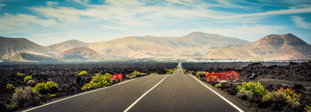 magnificent panorama of road leading to mountains