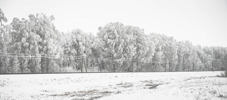 beautiful panorama with snow-covered trees and railway Stock Photo